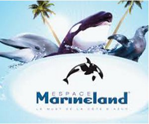 MARINELAND INTERNET