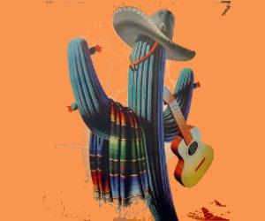 MEXIQUE INTERNET